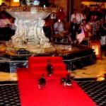 Famous Ducks Walk Peabody Hotel